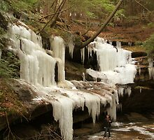 Huge Icicles by LeeMascarello