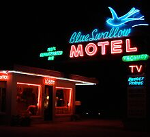 Blue Swallow Motel by Sally P  Moore