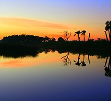 Another Beautiful Sunrise In Florida by RebeccaBlackman