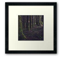 { wanderlüst } Framed Print