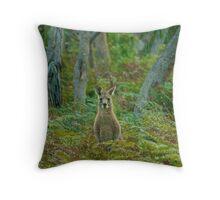 Kangaroo in the ferns B Throw Pillow