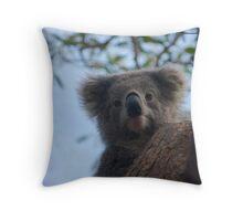 Koala up a tree B Throw Pillow