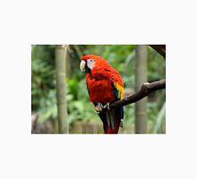 Macaw Macaw T-Shirt