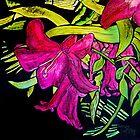 Lily by Susan Duffey