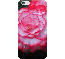 Begonia ~ white with pink edging iPhone Case/Skin