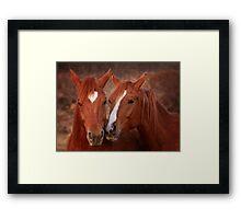Equine Secrets Framed Print