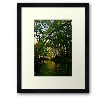 Springtime on the Hillsborough River Framed Print