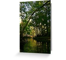Springtime on the Hillsborough River Greeting Card