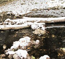 Snowy Log in a Stream  by LeeMascarello