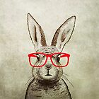quirky bunny by Amanda  Cass