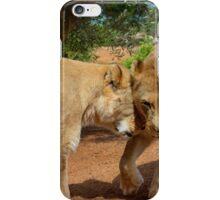 Lionesses iPhone Case/Skin