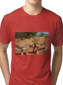 Lionesses Tri-blend T-Shirt