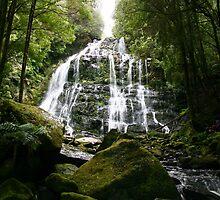 Hogarth Falls, Tasmania by Gail Mew