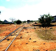 Outback Country Rail Line by Roanne