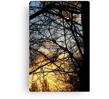 Bright Sunset  Canvas Print