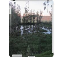 Evening at the pond iPad Case/Skin