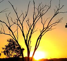 Brilliant Sunset Outback Australia by Roanne