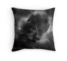 Talismanicat Throw Pillow