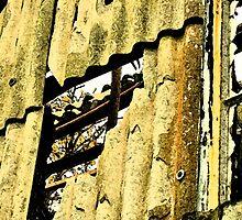 corrugated iron  by paula cattermole artinapuddle