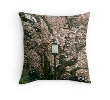 Lamppost in Cherry blossoms Throw Pillow