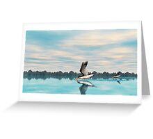 Black Skimmer Greeting Card