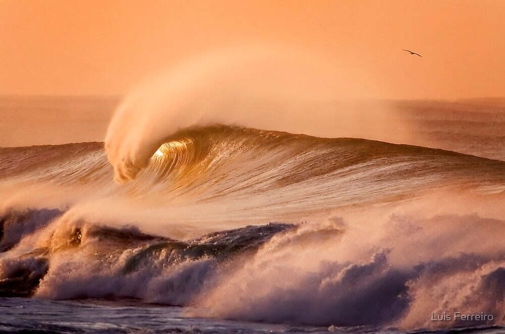 Rye Back Beach by Luis Ferreiro