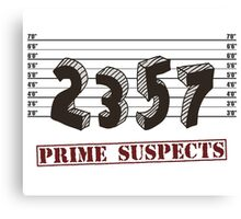 The Prime Number Suspects Canvas Print