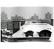 Snowy Rooftop Poster