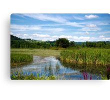 The Perfect Summer Day Canvas Print