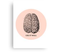 Use it well Canvas Print