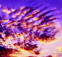 purple worship by Sam Fonte