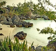 Willowbank Beach, Bermuda by triciamary