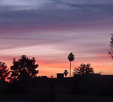 Pink & Purple Sunrise by down23
