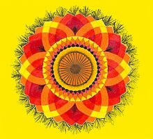 Sun Mandala by JenLand