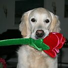 Ditte with her newest toy by Trine