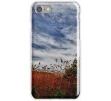 Clouds Above a Grassy Field iPhone Case/Skin