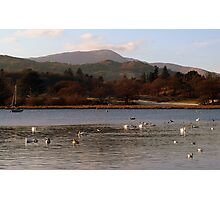 windermere late afternoon light. Photographic Print