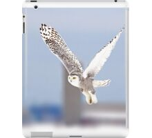 Along a country road - Snowy Owl iPad Case/Skin