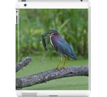 Green Heron wins local fishing contest! iPad Case/Skin