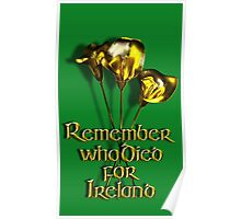 Remember who Died for Ireland Poster