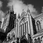 Truro Catherdral.......... by Lucan  Netley (LDN Photoart)