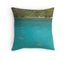 Multiple Black Tip Reef Sharks, Moorea Throw Pillow