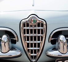 Alfa Romeo Giulia Spider Grille by Flo Smith