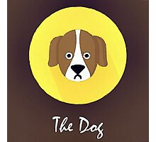 The Dog Cute Portrait Photographic Print
