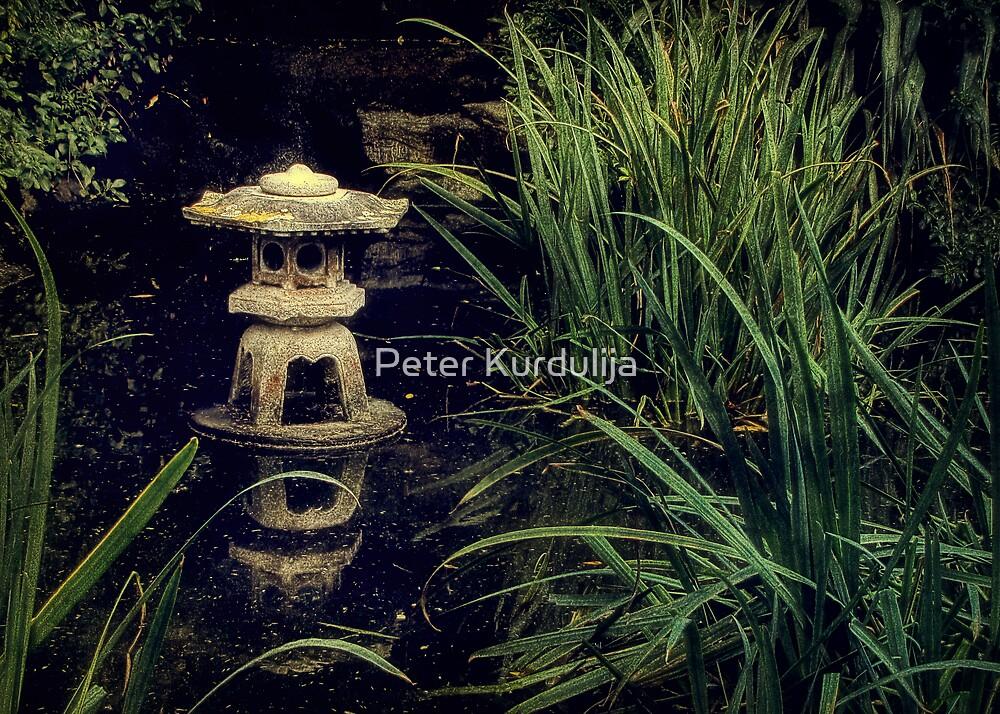 Wisdom Lost by Peter Kurdulija