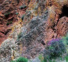 Pinnacles Colours by Roberto Herrett