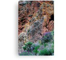 Pinnacles Colours Canvas Print