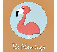 The Flamingo Cute Portrait Photographic Print