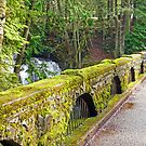 Whatcom Falls Bridge-Above by Tamara Valjean