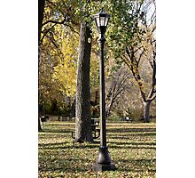 light pole Photographic Print